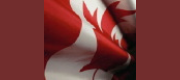 Canada opens consultation on heavy metal impurities