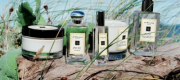 JO MALONE WOOD REVEALS SAGE & SEA SALT FRAGRANCE