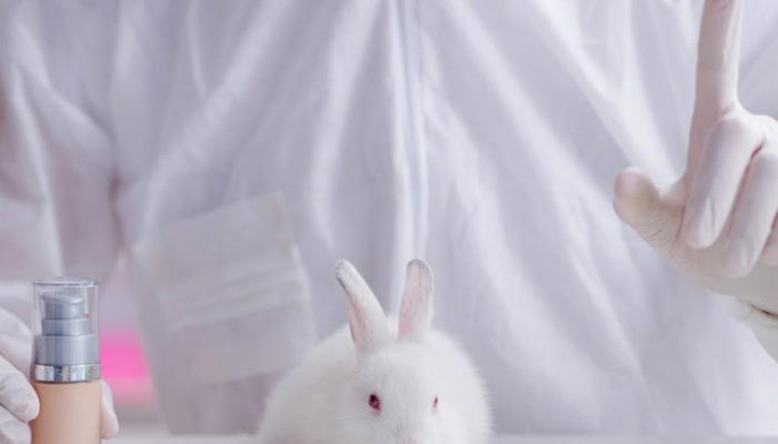Colombia to ban use of animals in cosmetics testing by 2024