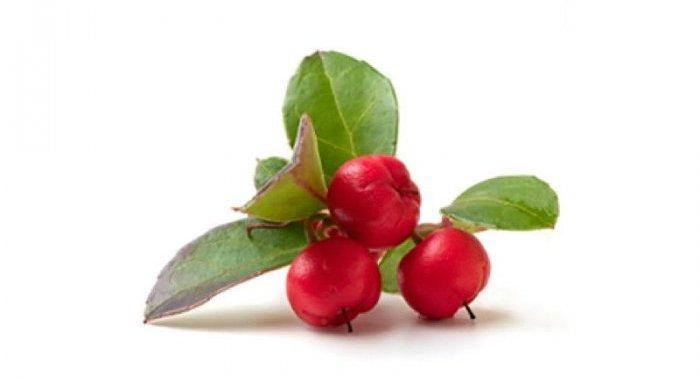 Neosalyl, l'acide salicylique naturel et traçable
