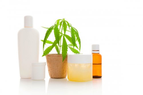 Hemp seed oil is a powerful ingredient in beauty products. Photo: ©...