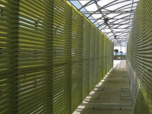 Greensea has been producing microalgae and algae extracts since...